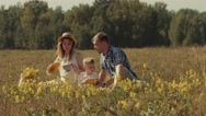 Sunny family eating and drinking in summer field Stock Footage