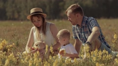 Smiling young family playing at green field on a great summer day Stock Footage