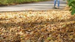 Teen rides a skateboard through fallen autumn leaves in the park Stock Footage