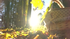 Falling yellow leaves against shining sun and basket. Sunny autumn day. Super Stock Footage