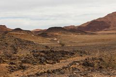Road in the desert Sahara Kuvituskuvat