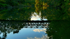 4K Bridge Reflection on Calm Ocean Water, Nature Park Landscape, Dusk Stock Footage