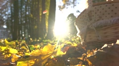 Super slow motion shot of falling autumn leaves against shining sun and picnic Stock Footage