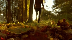 Blurred female running on fallen autumn leaves in sunny forest. Blazing sun Stock Footage