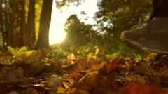 Defocused girl running on fallen autumn leaves in sunny forest. Blazing sun Stock Footage