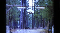 1968: the daunting entrance to the infamous camp lawson CLARKSDALE, ARIZONA Stock Footage