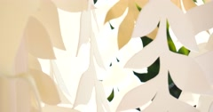 White decorative leaves on wind Stock Footage