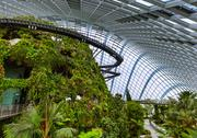 Cloud Forest Dome at Gardens by the Bay in Singapore Stock Photos