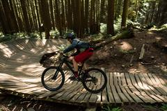 Male cyclist cycling in forest Stock Photos