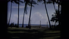 1965: palm trees by the sea shore on a beautiful sunny day, while people stroll Stock Footage