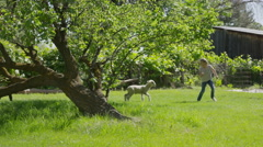 Wide slow motion tracking shot of girl running in field with lamb / Springville, Stock Footage