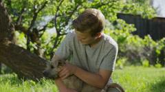 Medium shot of kneeling boy playing with dog in field / Springville, Utah, Stock Footage