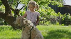 Medium shot of kneeling girl petting dog in field / Springville, Utah, United Stock Footage