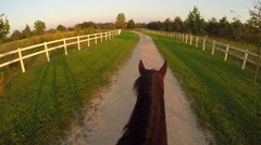 FPV: Horseback riding strong brown horse in peaceful recreational park at sunset Arkistovideo