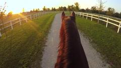 FPV: Horseback riding beautiful strong dark brown horse at golden sunset Stock Footage