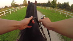 POV: Unrecognizable woman holding reins and whip and riding dark brown horse Stock Footage