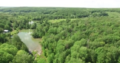 Beautiful summer forest on a clear day, shot at quadrocopter Stock Footage