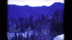 1951: some old footage of trees in the winter on a gloomy day in the mountains Stock Footage