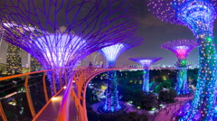 Supertrees at Gardens by the Bay, illuminated at night, Singapore, Southeast Stock Footage