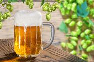 Beer glass on the wooden table with hop cones Stock Photos