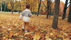 Cute little boy running through the amazing autumn alley in the park Stock Footage