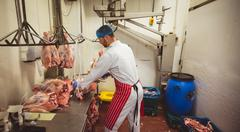 Butcher hanging red meat in storage room Stock Photos