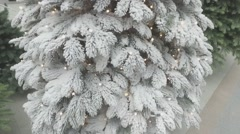 Artificial Christmas Trees in the Snow Stock Footage