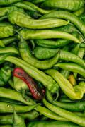 Pile of spicy green hot chili peppers Stock Photos