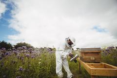 Beekeeper using bee smoker Stock Photos