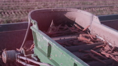 Close up of tractor's on-board conveyor belt, moving freshly harvested carrots. Stock Footage