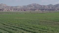 Pan across miles of green farmland with untouched mountains in the distance. Stock Footage