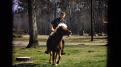 1967: a handsome young man in a plaid shirt riding a small horse or pony ARIZONA Stock Footage