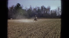 1967: a young man is riding a horse across a freshly plowed field Stock Footage