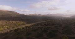 Volcanic Vineyards La Geria Stock Footage