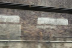 Full frame shot of trees reflecting on train window Stock Photos