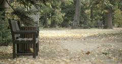Autumn leaves fall on an alley in the park in slow motion Stock Footage