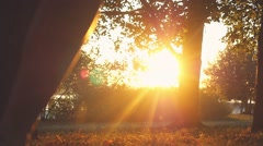 Joyful girl runs through the sun in autumn park in slowmotion during sunset Stock Footage