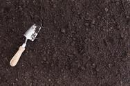 A single white spade lies in rich black soil Stock Photos