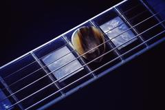 Guitar Pick on Fret-board Stock Photos