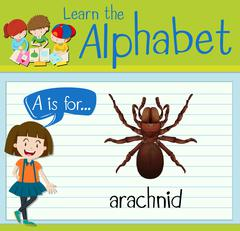 Flashcard letter A is for arachnid Stock Illustration