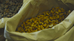 Cashew nuts in a large bag on a market stall Stock Footage