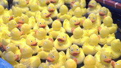 Duck catching carnival game 4k Stock Footage