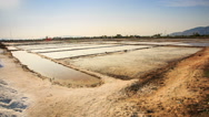 Endless Salt Lakes Heaps Canals at Production Ponds in Vietnam Stock Footage