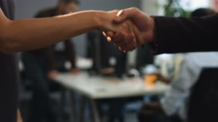 Two business partners handshaking after successful project Stock Footage