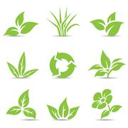 Green Leaves isolated on white Stock Illustration