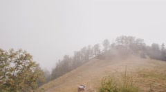 Low fog clings to the grown in a rocky valley. Time lapse. Stock Footage