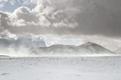 Strong wind raises a cloud of powder snow from the ground, Campo Imperatore Stock Photos