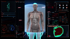 Zooming Female body and scanning human muscle, blood in digital dashboard. Stock Footage