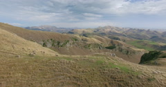 Aerial over a grass ridge on a farm and sheep grazing at Te Mata Peak, New Stock Footage