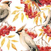 Watercolor waxwing and rowan pattern Stock Illustration